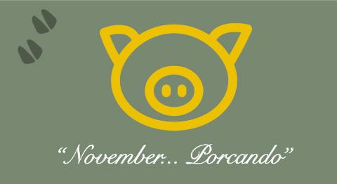 November-Porcando
